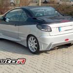 P206-R-01′